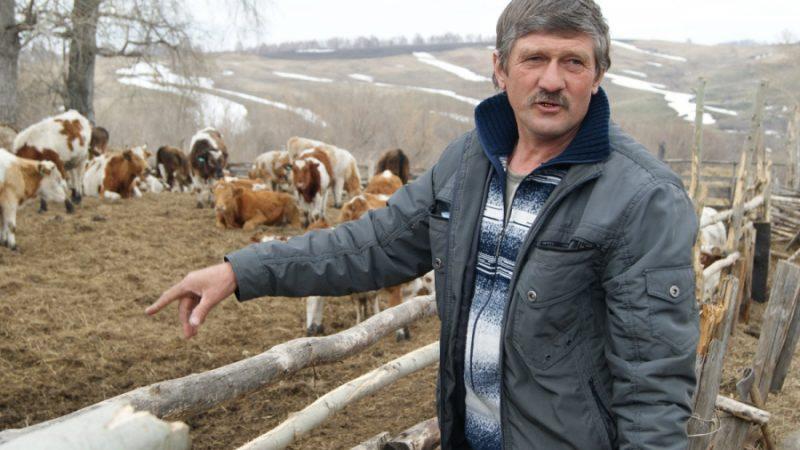 Фермер Данилов — «и швец, и жнец…»