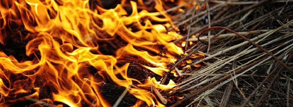 В Алтайском крае отменен особый противопожарный режим